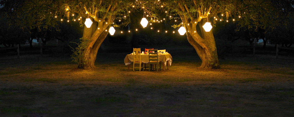 Dining-under-trees-large